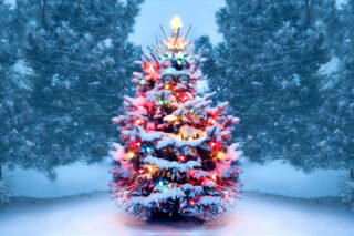 christmas-tree-gettyimages-1072744106